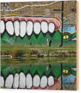 Reflective Canal 13 Wood Print