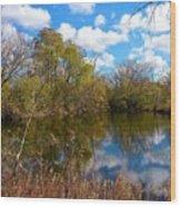 Reflective Cloudy Palatine, Il,  Library Pond Wood Print