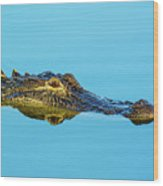 Reflective Gator Wood Print