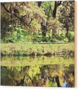 Reflective Live Oaks Wood Print