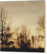 Reflective Moments Wood Print