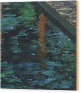 Reflective State Wood Print