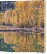 Reflecton Before Sunrise Wood Print