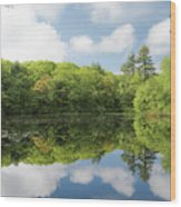 Reflecton On Tranquility Wood Print