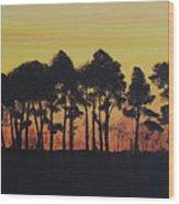 Refuge Sundown Wood Print