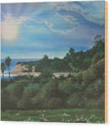 Refugio Point 4 Wood Print