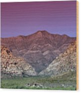 Regal Desert Wood Print