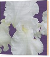 Regal Iris  Wood Print