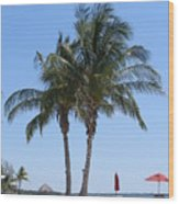 Regal Palms Wood Print