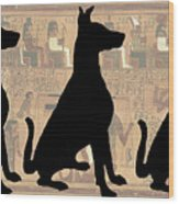 Regal Sit, Ancient Egyptian Background Wood Print