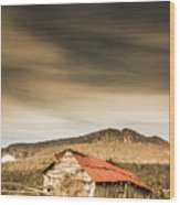 Regional Ranch Ruins Wood Print