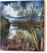 Reifel In Winter 4 Wood Print