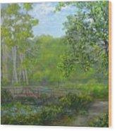 Reinsteinwoods Park Wood Print