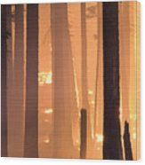 Rejuvenation Wood Print