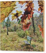 Relax And Watch The Leaves Turn Wood Print