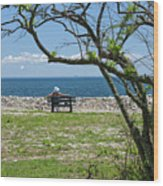 Relaxing By The Shore Wood Print