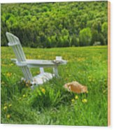 Relaxing On A Summer Chair In A Field Of Tall Grass  Wood Print