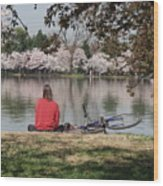 Relaxing Under Cherry Blossoms Wood Print