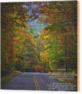 Relief Road  Blue Ridge Parkway Wood Print by John Haldane
