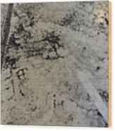 Remains 3 Wood Print