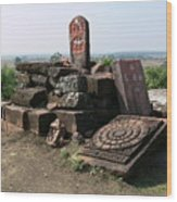 Remains At Bhojpur Wood Print