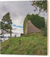 Remains Of Castle Lachlan Wood Print