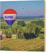 Remax Hot Air Balloon Ride Wood Print