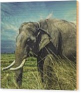Remember Elephant Wood Print