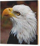 Reminiscent Bald Eagle Wood Print