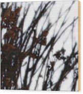 Remnant Wood Print