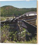 Remnants Of Caribou Wood Print