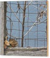 Remnants Of Fall 2 Wood Print