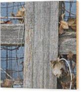 Remnants Of Fall Wood Print