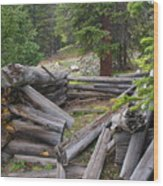 Remnants Of Sherrod Loop Wood Print