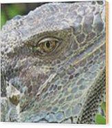 Reptilian Wood Print
