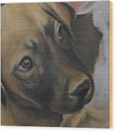 Rescue Pup Wood Print