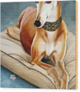 Rescued Greyhound Wood Print by Sandra Chase