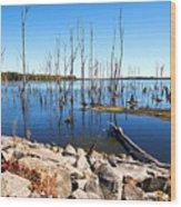 Reservoir Wood Print