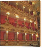 Residenz Theatre 2 Wood Print