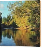 Yamhill River Reflections Wood Print