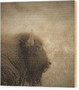 Resting Buffalo Wood Print