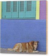 Resting In Boca Wood Print