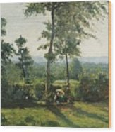 Resting In The Countryside Wood Print