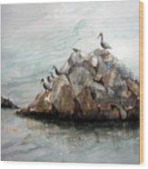 Resting Place - Corona Del Mar Ca Wood Print