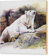 Resting Polar Bear Wood Print