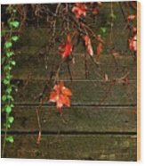 Retaining Wall In Autumn Wood Print