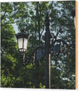 Retro Chic Streetlamps - Old World Charm With A Modern Twist Wood Print