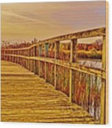 Retro Crosswinds 101914 Wood Print