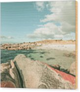 Retro Filtered Beach Background Wood Print