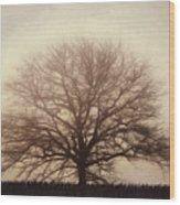 Retro Foggy Tree Wood Print